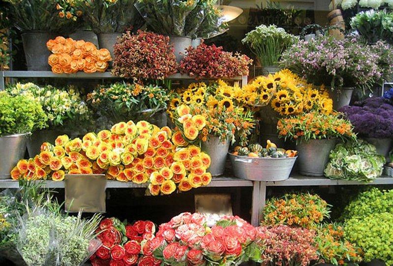 Post image of Продажа цветов